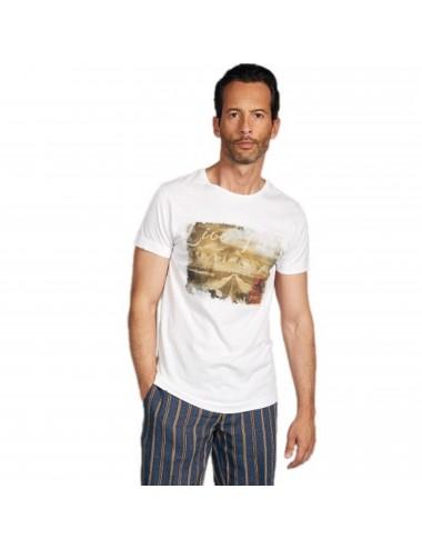 T-shirt Girocollo Uomo 100%...